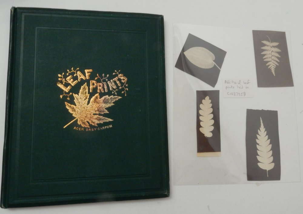 Leaf Prints : or Glimpses at Photography. Charles F. Himes, PH D.