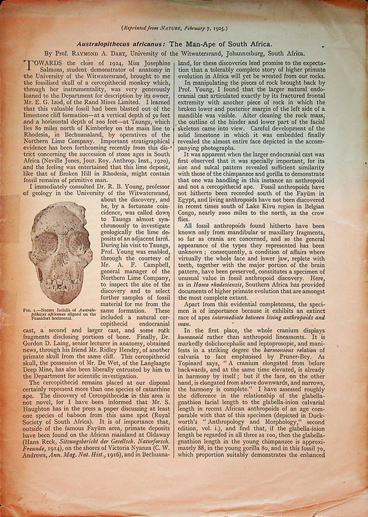 Australopithecus Africanus: The Man-ape of South Africa [ The Taung Child ]. Raymond A. Dart.