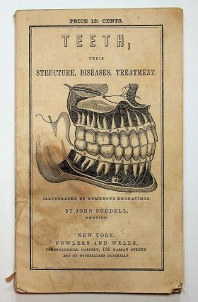 TEETH, Their Structure, Disease, Treatment ... illustrated by numerous engravings ...Twelfth...